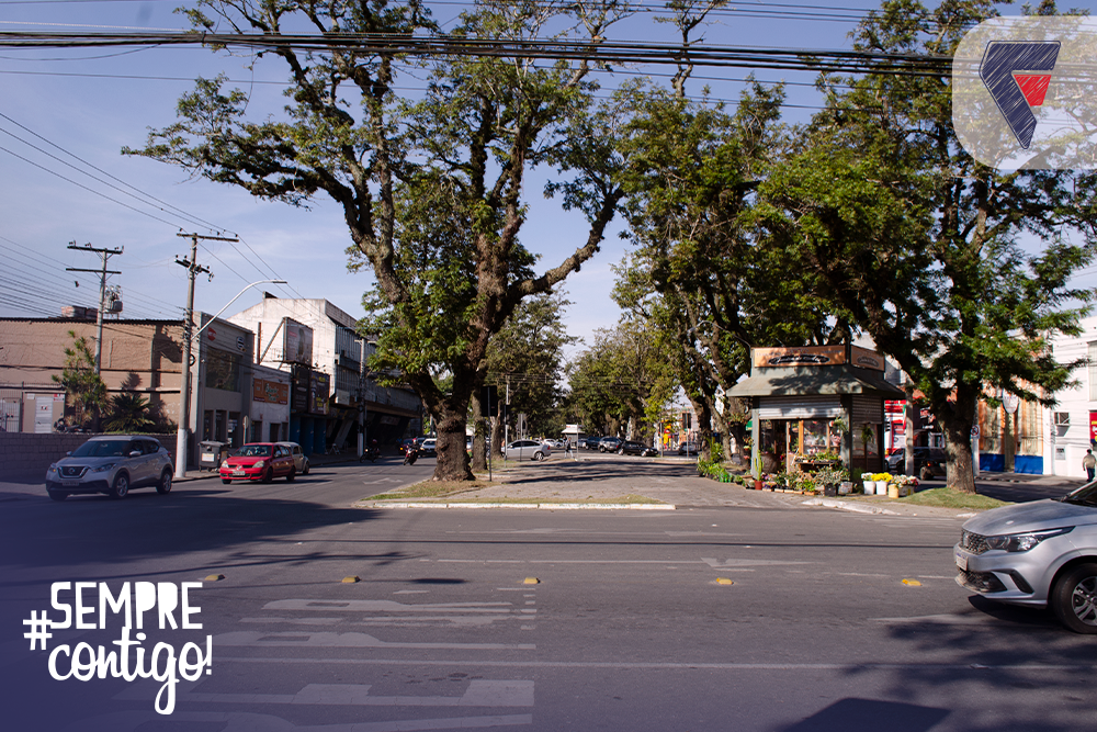 Avenida de Pelotas
